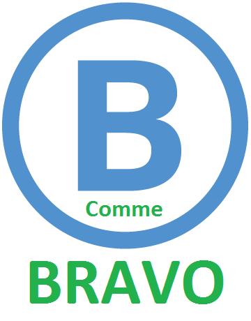 rer_b_bravo